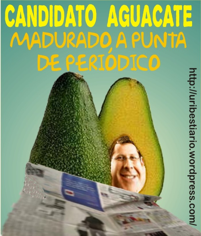 Aguacate_arias